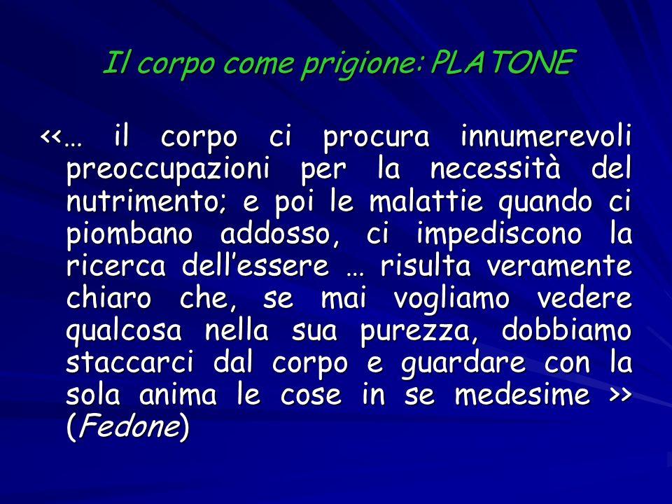Il corpo come prigione: PLATONE > (Fedone) > (Fedone)