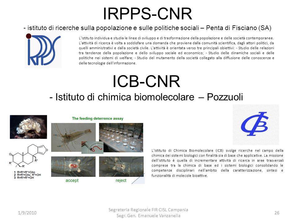 IRPPS-CNR - istituto di ricerche sulla popolazione e sulle politiche sociali – Penta di Fisciano (SA) 1/9/2010 Segreteria Regionale FIR CISL Campania