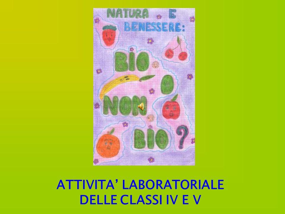 ATTIVITA LABORATORIALE DELLE CLASSI IV E V