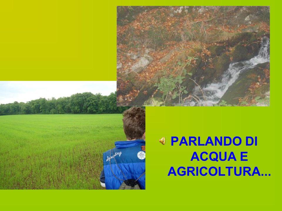 PARLANDO DI ACQUA E AGRICOLTURA...