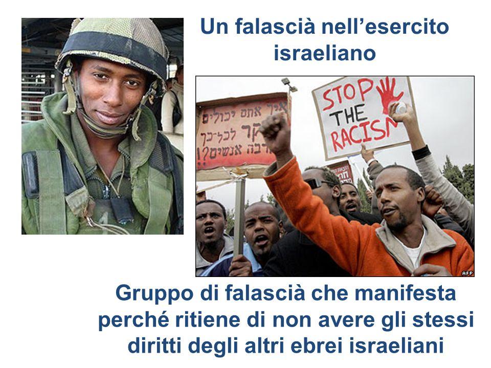 Gruppo di falascià che manifesta perché ritiene di non avere gli stessi diritti degli altri ebrei israeliani Un falascià nellesercito israeliano