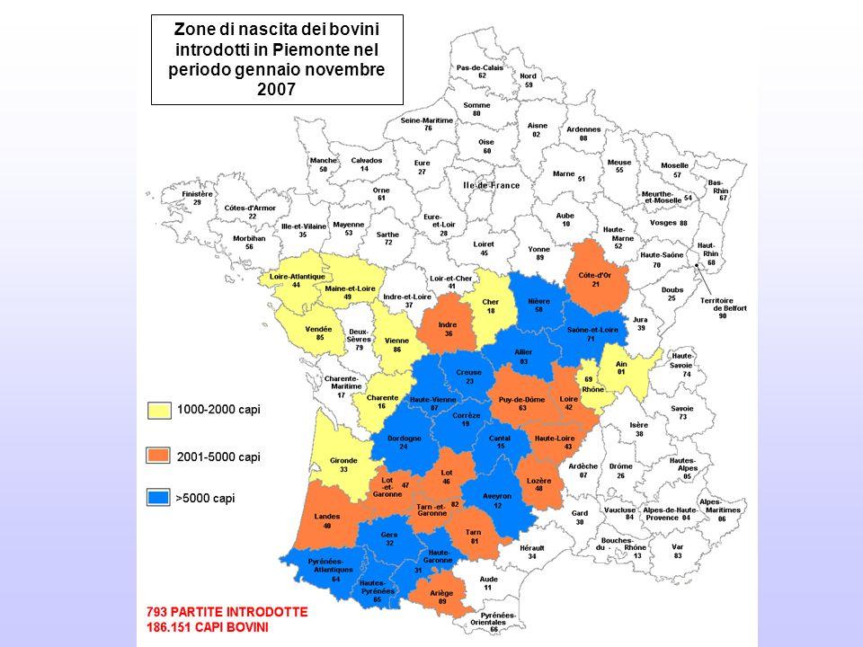 Zone di nascita dei bovini introdotti in Piemonte nel periodo gennaio novembre 2007