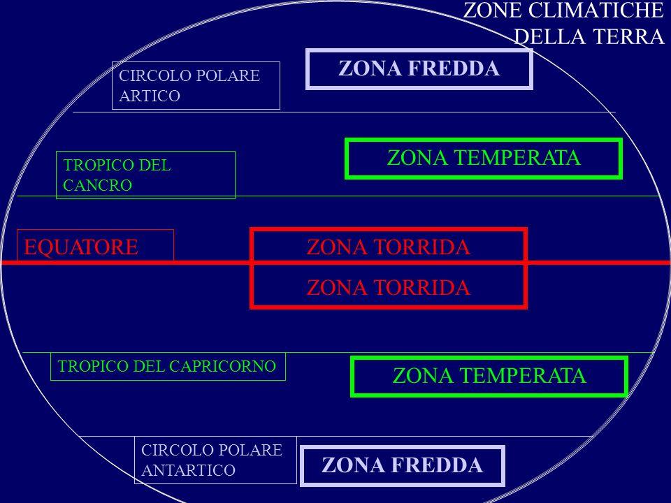 ZONA DEI CLIMI TEMPERATI CLIMALUOGOCARATTERISTICHEAMBIENTIMEDITERRANEO TIPICO DELLE COSTE DEL MAR MEDITERRANEO -ZONE COSTIERE -ZONE COSTIERE DEI CONTINENTI (25° E 40° DI LATITUDINE) -INVERNI MITI E PIOVOSI -ESTATI CALDE E SECCHE -SCARSA ESCURSIONE TERMICA -FORESTA MEDITERRANEA - MACCHIA MEDITERRANEA CONTINENTALE E DI TRANSIZIONE ZONE LONTANO DAL MARE -ESTATI CALDE -INVERNI FREDDI -LE PRECIPITAZIONI DIMINUISCONO VERSO LINTERNO -FORESTA DI LATIFOGLIE - BOSCHI MISTI - PRATERIA -- STEPPA OCEANICO TIPICO DELLE COSTE ATLANTICHE - EUROPA OCC.