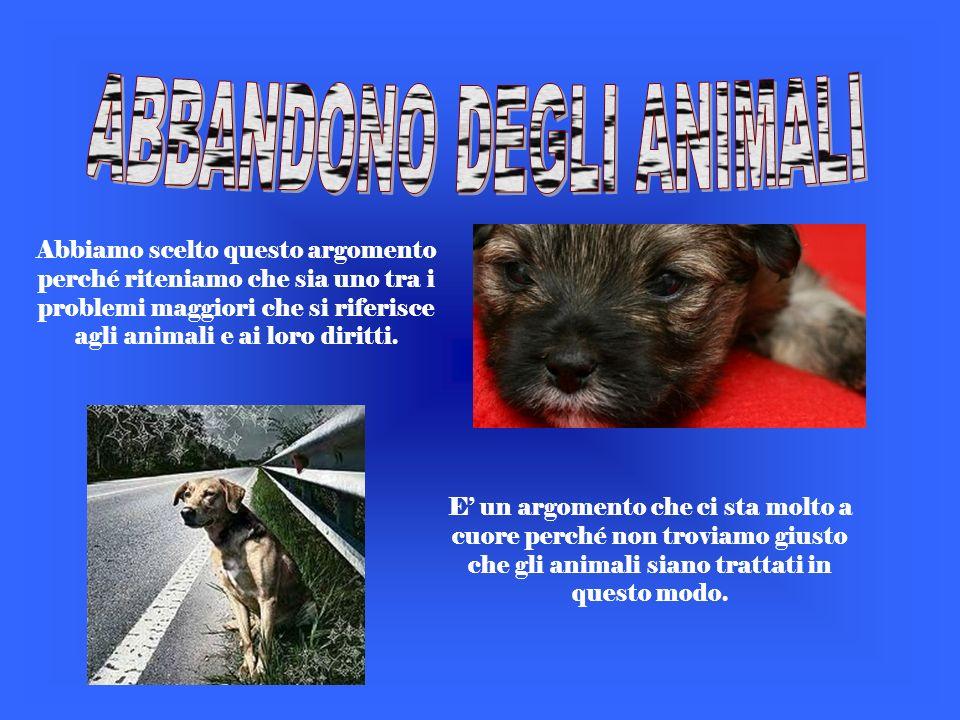 Abbiamo scelto questo argomento perché riteniamo che sia uno tra i problemi maggiori che si riferisce agli animali e ai loro diritti.