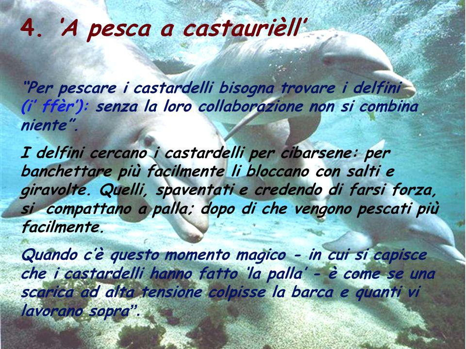 4. A pesca a castaurièll Per pescare i castardelli bisogna trovare i delfini (i ffèr): senza la loro collaborazione non si combina niente. I delfini c