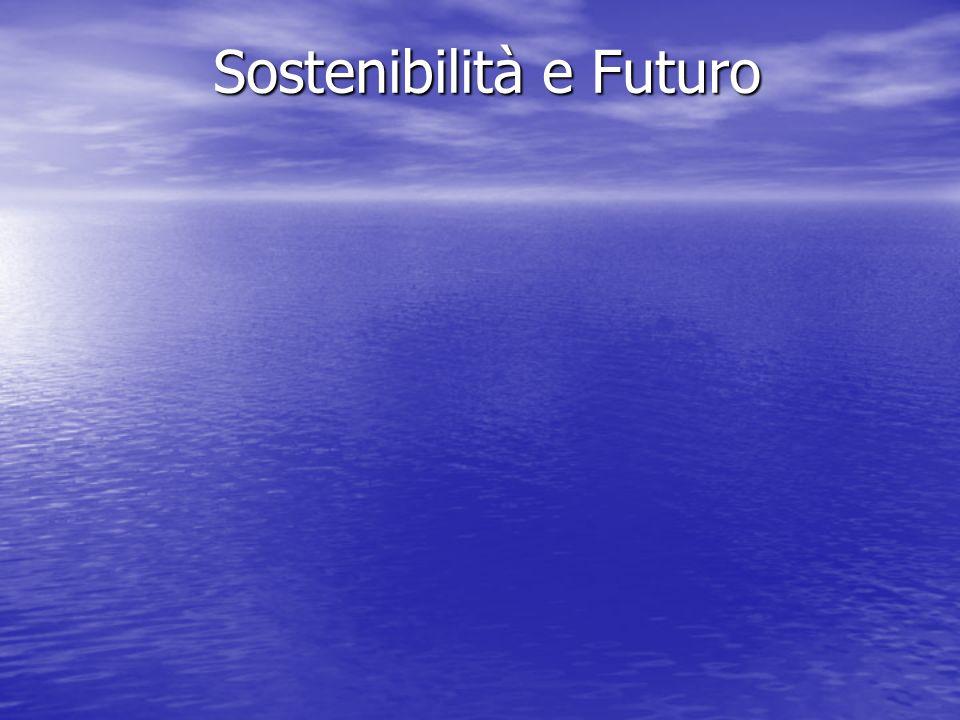 È possibile conciliare sostenibilità e sviluppo.