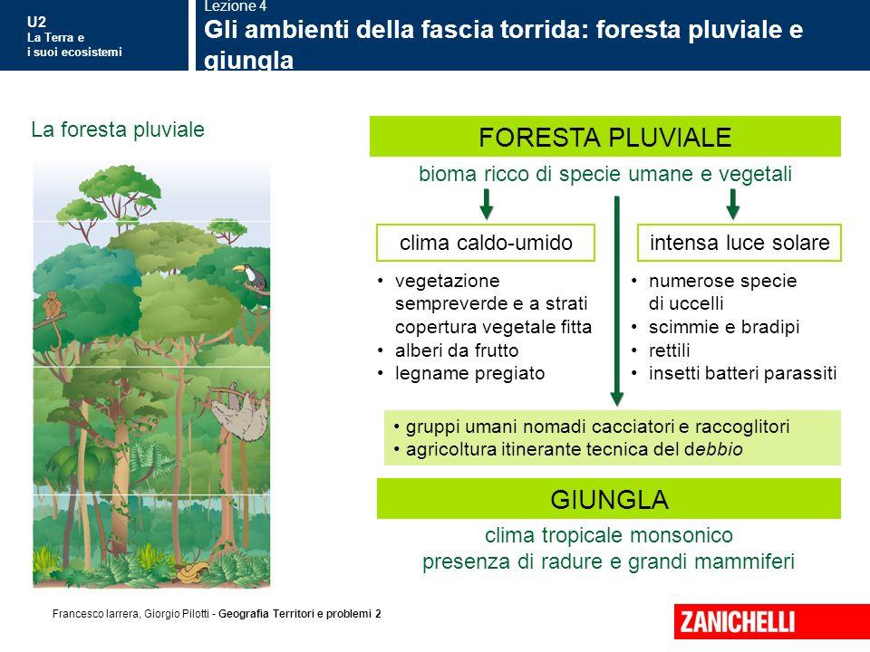 U2 La Terra e i suoi ecosistemi Francesco Iarrera, Giorgio Pilotti - Geografia Territori e problemi 2 La foresta pluviale bioma ricco di specie umane