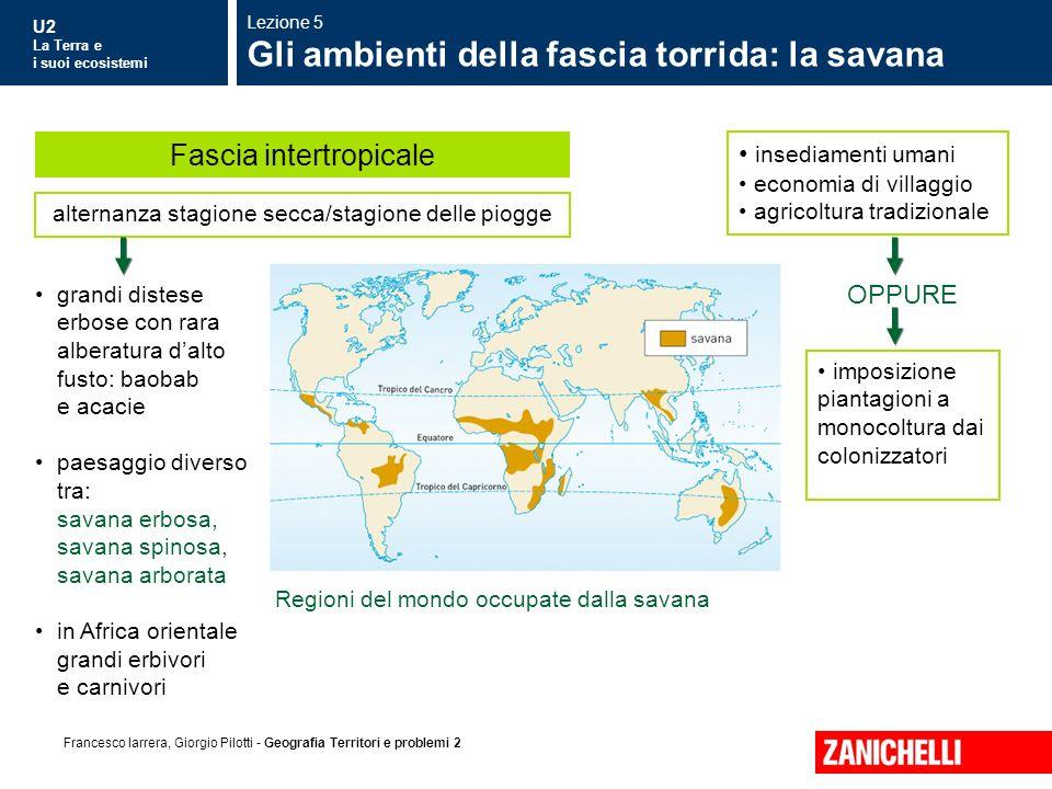 U2 La Terra e i suoi ecosistemi Francesco Iarrera, Giorgio Pilotti - Geografia Territori e problemi 2 grandi distese erbose con rara alberatura dalto