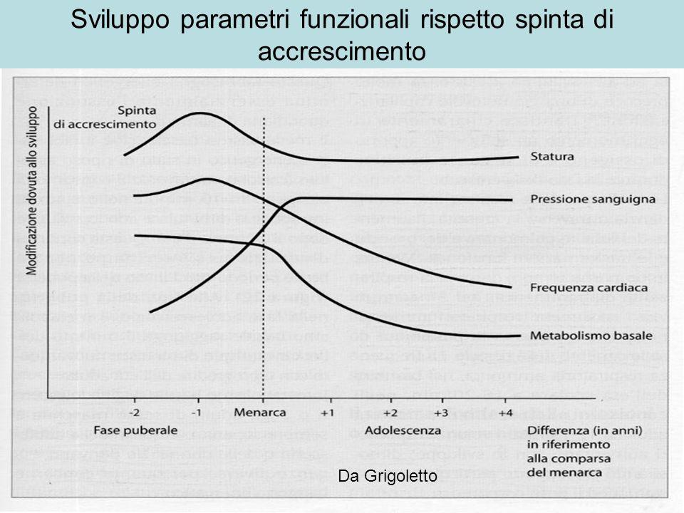 Sviluppo sistema nervoso Da Grigoletto