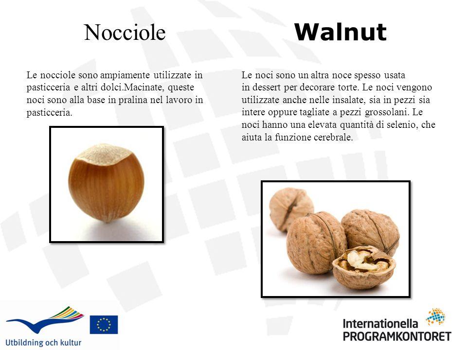 Nocciole Le nocciole sono ampiamente utilizzate in pasticceria e altri dolci.Macinate, queste noci sono alla base in pralina nel lavoro in pasticceria