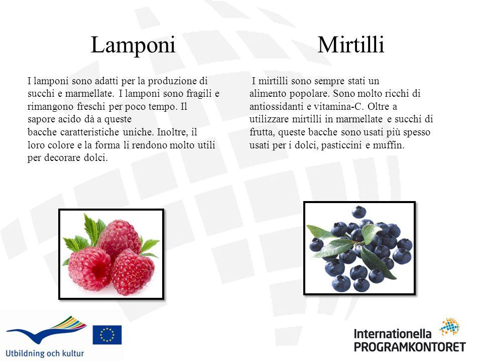 Lamponi I lamponi sono adatti per la produzione di succhi e marmellate. I lamponi sono fragili e rimangono freschi per poco tempo. Il sapore acido dà