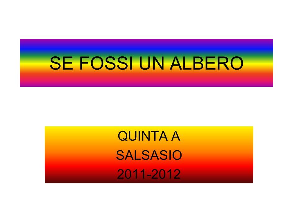 SE FOSSI UN ALBERO QUINTA A SALSASIO 2011-2012