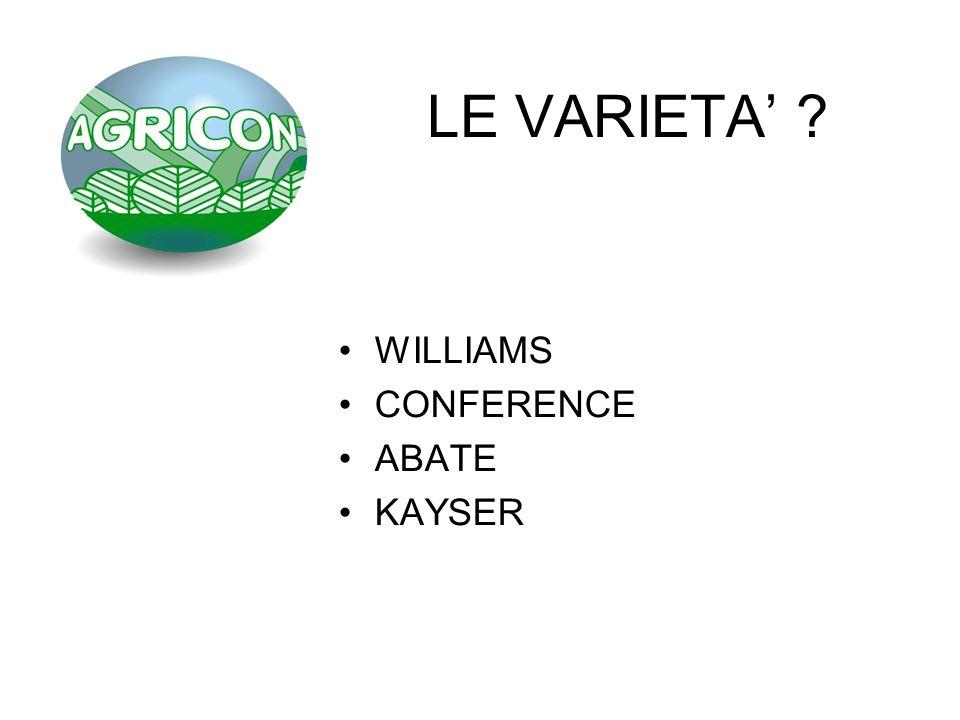 LE VARIETA ? WILLIAMS CONFERENCE ABATE KAYSER