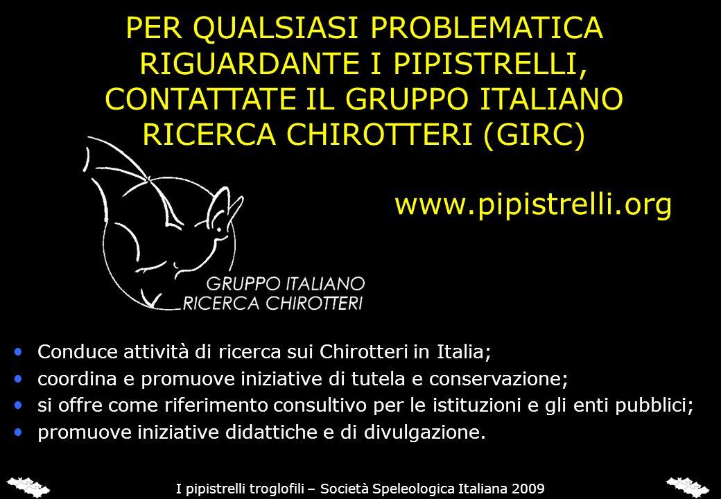 www.pipistrelli.org Conduce attività di ricerca sui Chirotteri in Italia; coordina e promuove iniziative di tutela e conservazione; si offre come rife