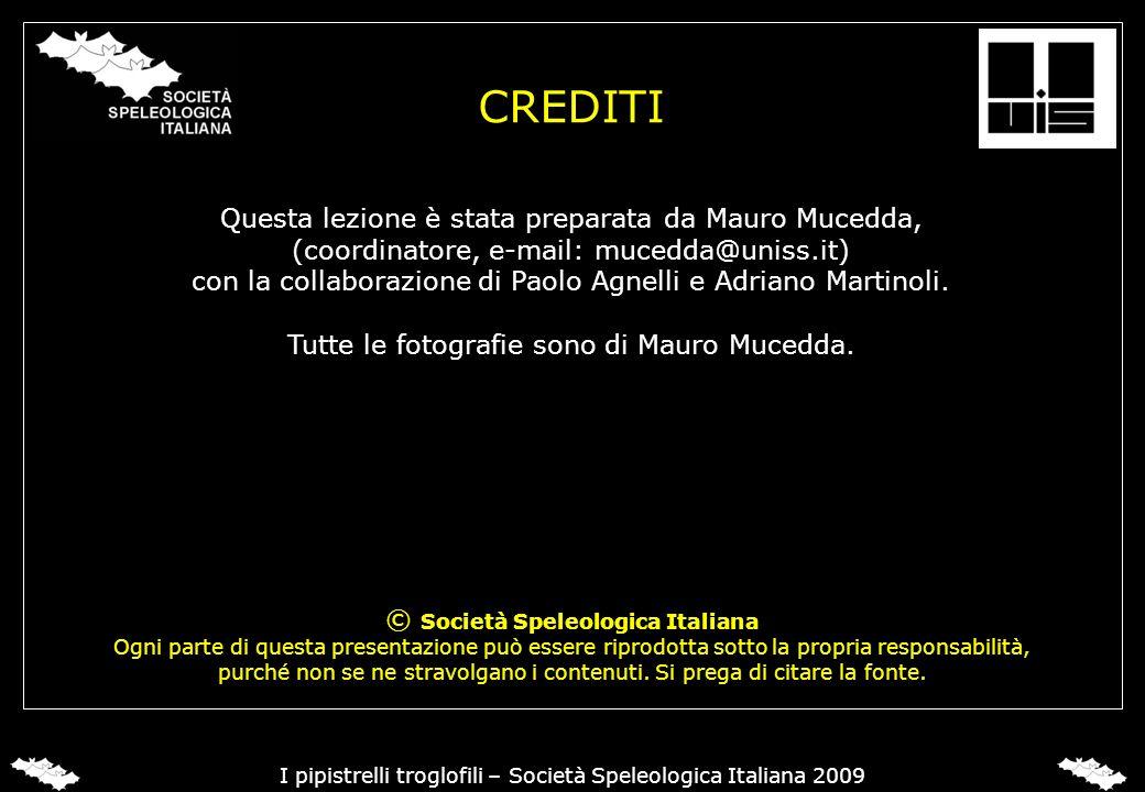 © Società Speleologica Italiana Ogni parte di questa presentazione può essere riprodotta sotto la propria responsabilità, purché non se ne stravolgano