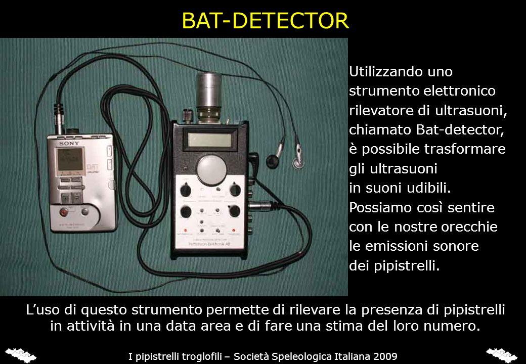 Utilizzando uno strumento elettronico rilevatore di ultrasuoni, chiamato Bat-detector, è possibile trasformare gli ultrasuoni in suoni udibili. Possia