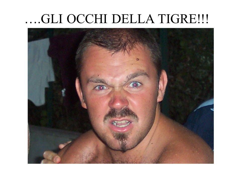 ….GLI OCCHI DELLA TIGRE!!!