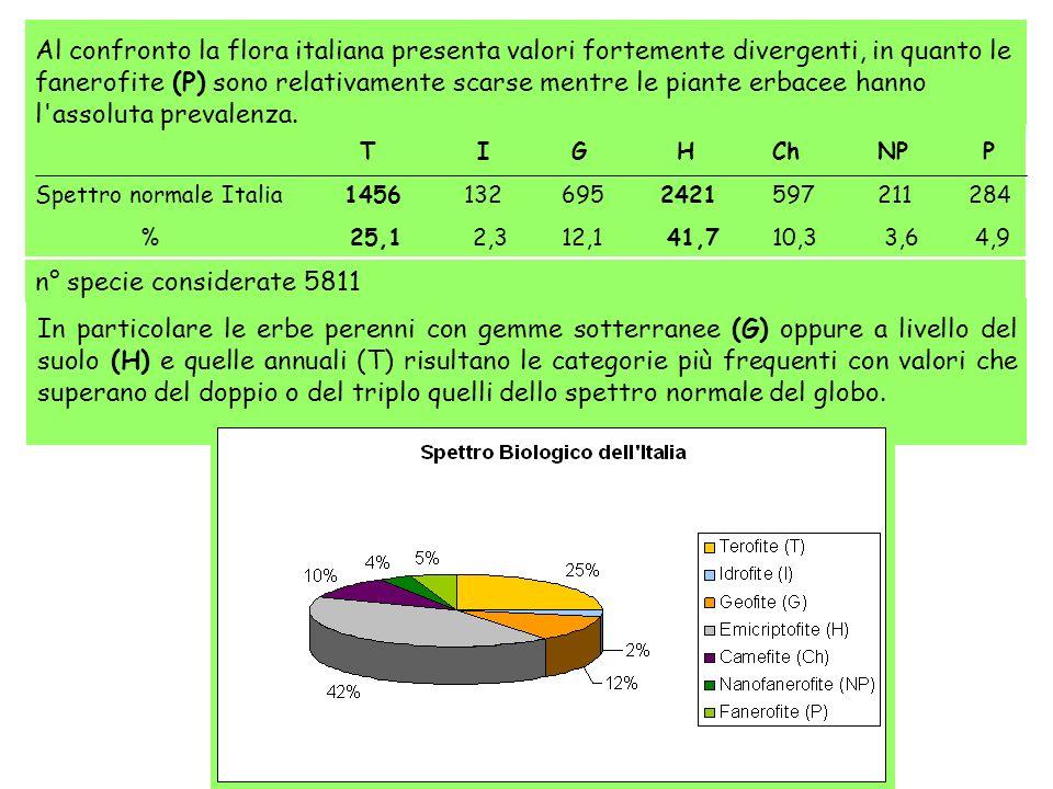 Al confronto la flora italiana presenta valori fortemente divergenti, in quanto le fanerofite (P) sono relativamente scarse mentre le piante erbacee h