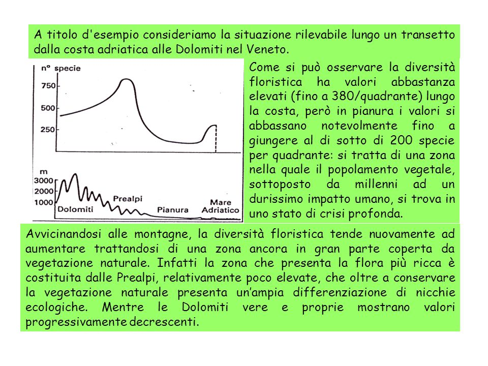 A titolo d'esempio consideriamo la situazione rilevabile lungo un transetto dalla costa adriatica alle Dolomiti nel Veneto. Avvicinandosi alle montagn