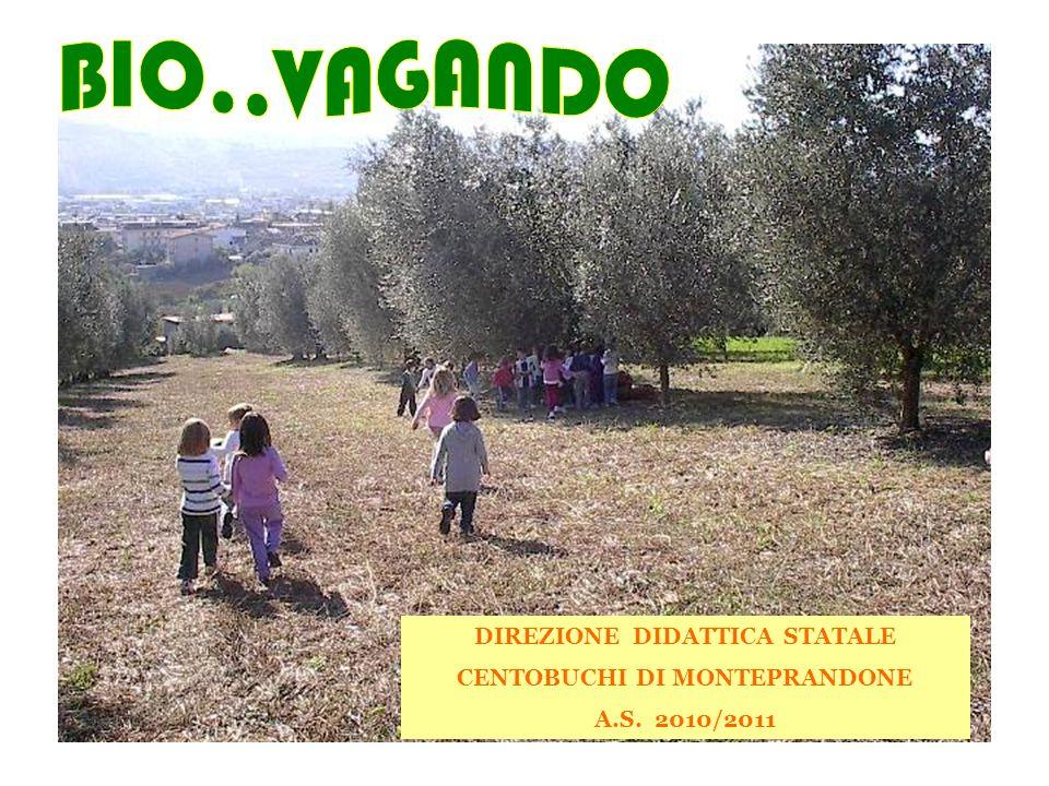 DIREZIONE DIDATTICA STATALE CENTOBUCHI DI MONTEPRANDONE A.S. 2010/2011