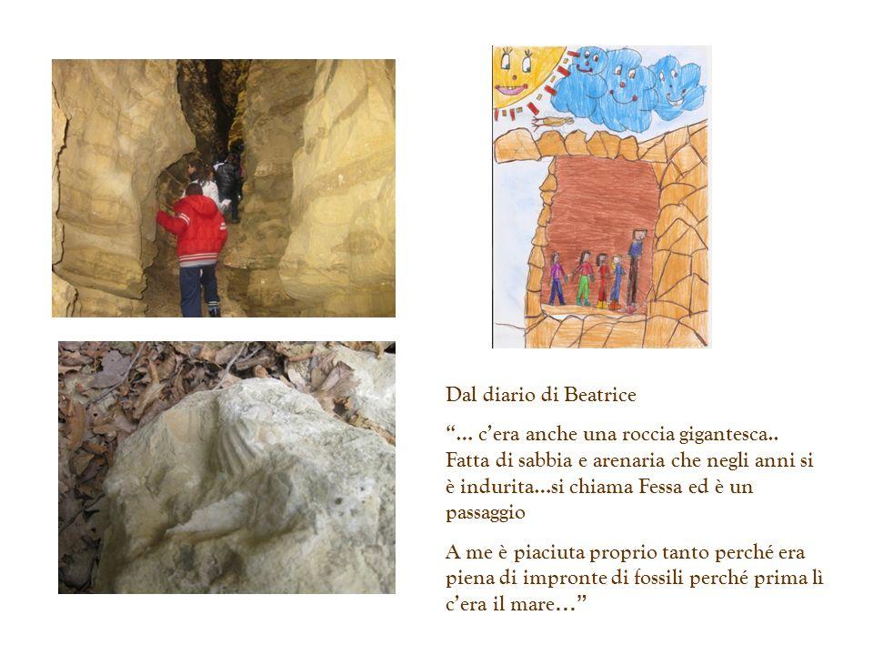 Dal diario di Beatrice … cera anche una roccia gigantesca.. Fatta di sabbia e arenaria che negli anni si è indurita…si chiama Fessa ed è un passaggio