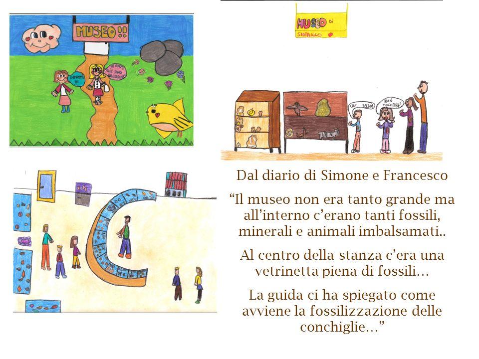 Dal diario di Simone e Francesco Il museo non era tanto grande ma allinterno cerano tanti fossili, minerali e animali imbalsamati.. Al centro della st
