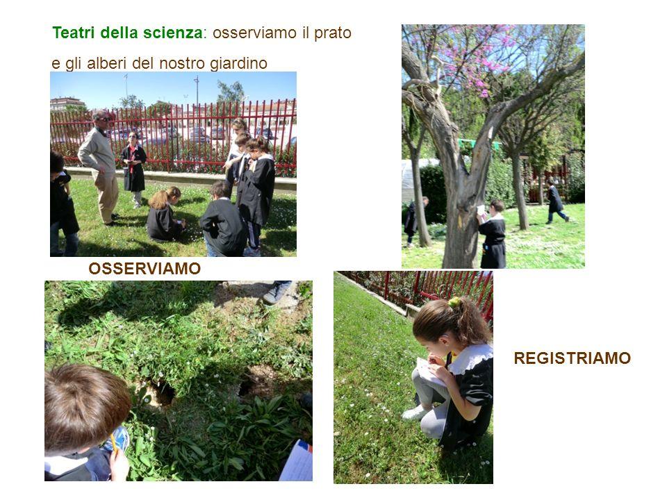 Teatri della scienza: osserviamo il prato e gli alberi del nostro giardino OSSERVIAMO REGISTRIAMO