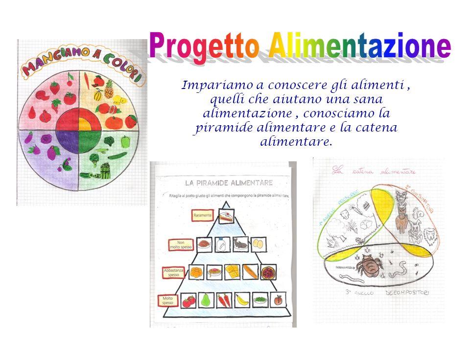 Impariamo a conoscere gli alimenti, quelli che aiutano una sana alimentazione, conosciamo la piramide alimentare e la catena alimentare.