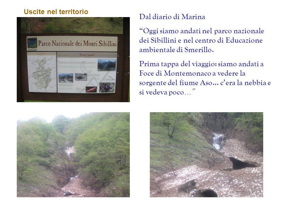 Dal diario di Marina Oggi siamo andati nel parco nazionale dei Sibillini e nel centro di Educazione ambientale di Smerillo. Prima tappa del viaggio: s