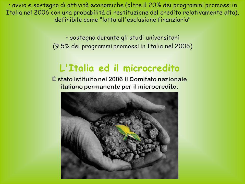 avvio e sostegno di attività economiche (oltre il 20% dei programmi promossi in Italia nel 2006 con una probabilità di restituzione del credito relativamente alta), definibile come lotta all esclusione finanziaria sostegno durante gli studi universitari (9,5% dei programmi promossi in Italia nel 2006) L Italia ed il microcredito È stato istituito nel 2006 il Comitato nazionale italiano permanente per il microcredito.