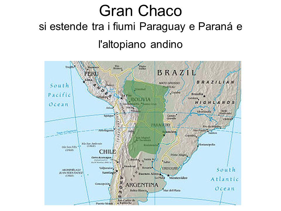 Gran Chaco si estende tra i fiumi Paraguay e Paraná e l'altopiano andino