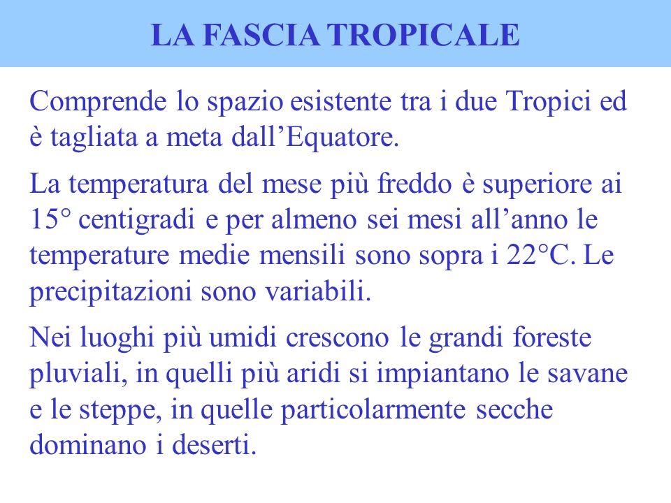 LA FASCIA TROPICALE Comprende lo spazio esistente tra i due Tropici ed è tagliata a meta dallEquatore. La temperatura del mese più freddo è superiore