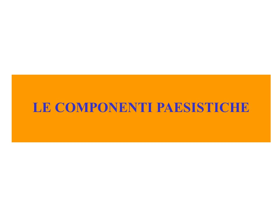 LE COMPONENTI PAESISTICHE