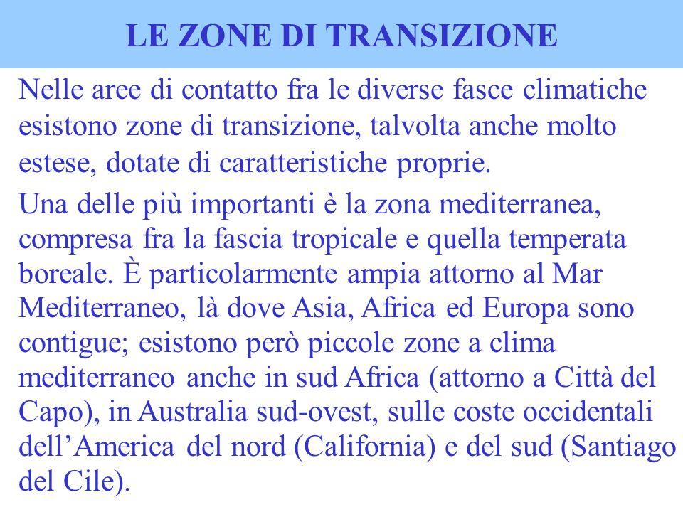LE ZONE DI TRANSIZIONE Nelle aree di contatto fra le diverse fasce climatiche esistono zone di transizione, talvolta anche molto estese, dotate di car