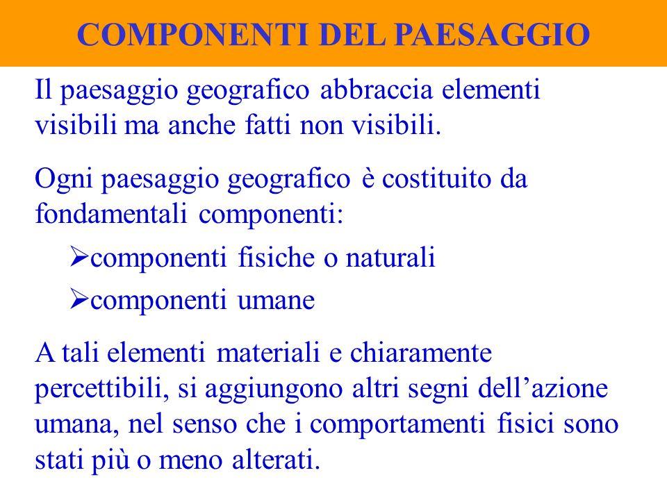 Il paesaggio geografico abbraccia elementi visibili ma anche fatti non visibili. Ogni paesaggio geografico è costituito da fondamentali componenti: co
