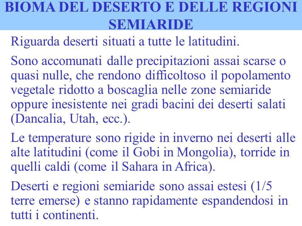 BIOMA DEL DESERTO E DELLE REGIONI SEMIARIDE Riguarda deserti situati a tutte le latitudini. Sono accomunati dalle precipitazioni assai scarse o quasi