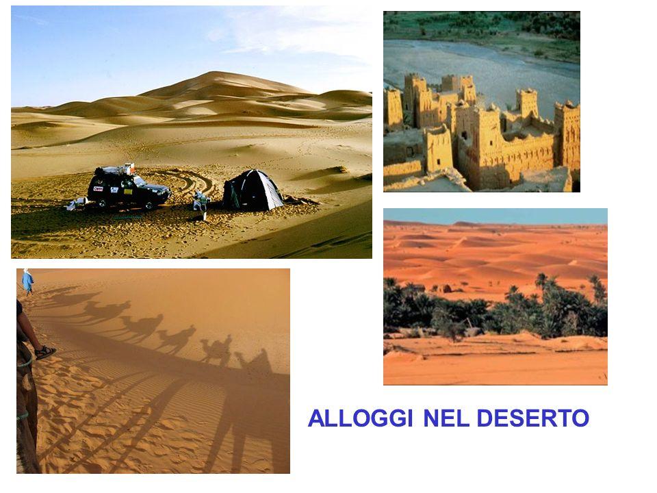 ALLOGGI NEL DESERTO