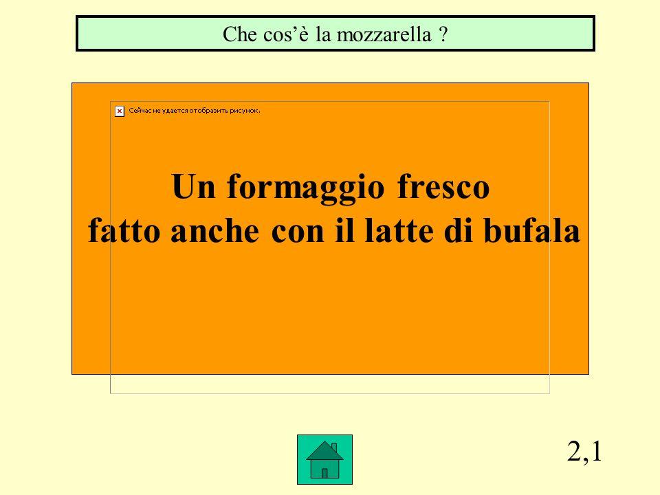 2,1 Un formaggio fresco fatto anche con il latte di bufala Che cosè la mozzarella ?