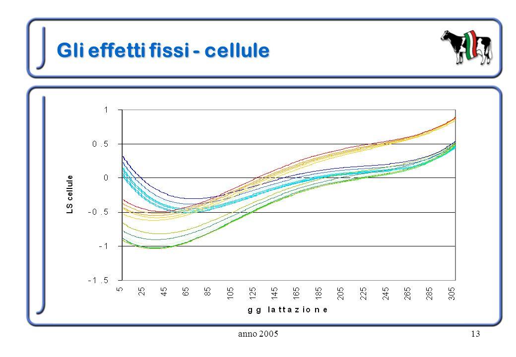 anno 200513 Gli effetti fissi - cellule