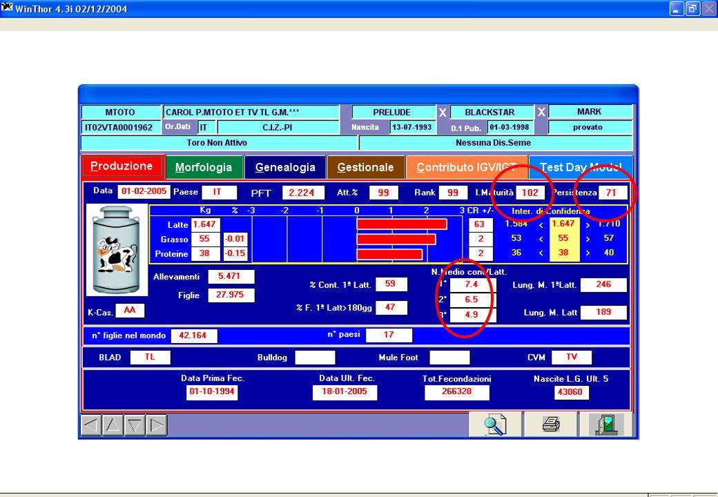 anno 200525 Informazioni più accurate Le informazioni in più
