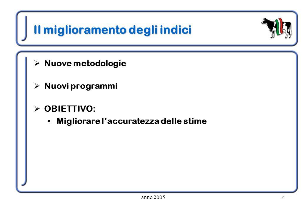 anno 20054 Il miglioramento degli indici Nuove metodologie Nuovi programmi OBIETTIVO: Migliorare laccuratezza delle stime