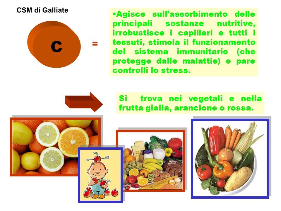 C = Agisce sullassorbimento delle principali sostanze nutritive, irrobustisce i capillari e tutti i tessuti, stimola il funzionamento del sistema immu