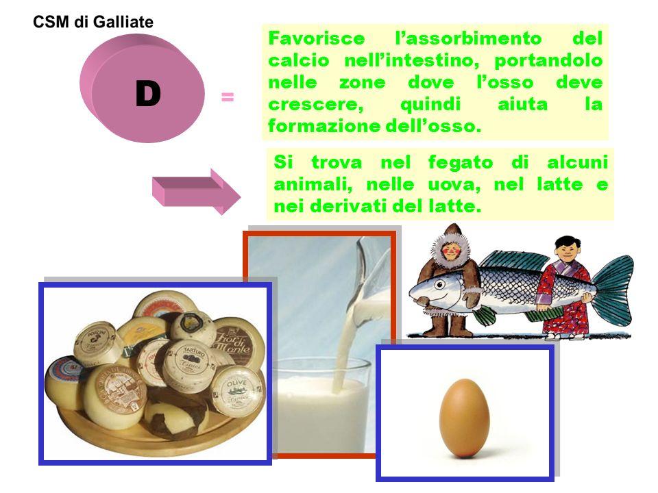 D = Favorisce lassorbimento del calcio nellintestino, portandolo nelle zone dove losso deve crescere, quindi aiuta la formazione dellosso. Si trova ne