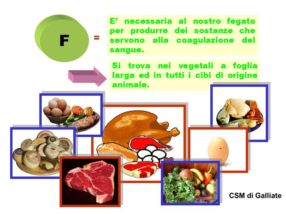 F = E necessaria al nostro fegato per produrre dei sostanze che servono alla coagulazione del sangue. Si trova nei vegetali a foglia larga ed in tutti