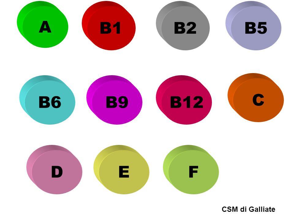 A B1B2B5 B6B9B12 C DEF CSM di Galliate