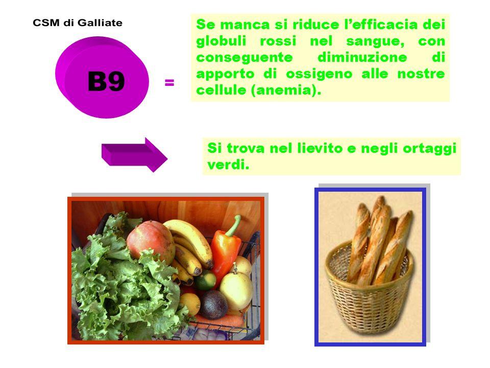B12 = E contro lanemia e protegge il fegato.