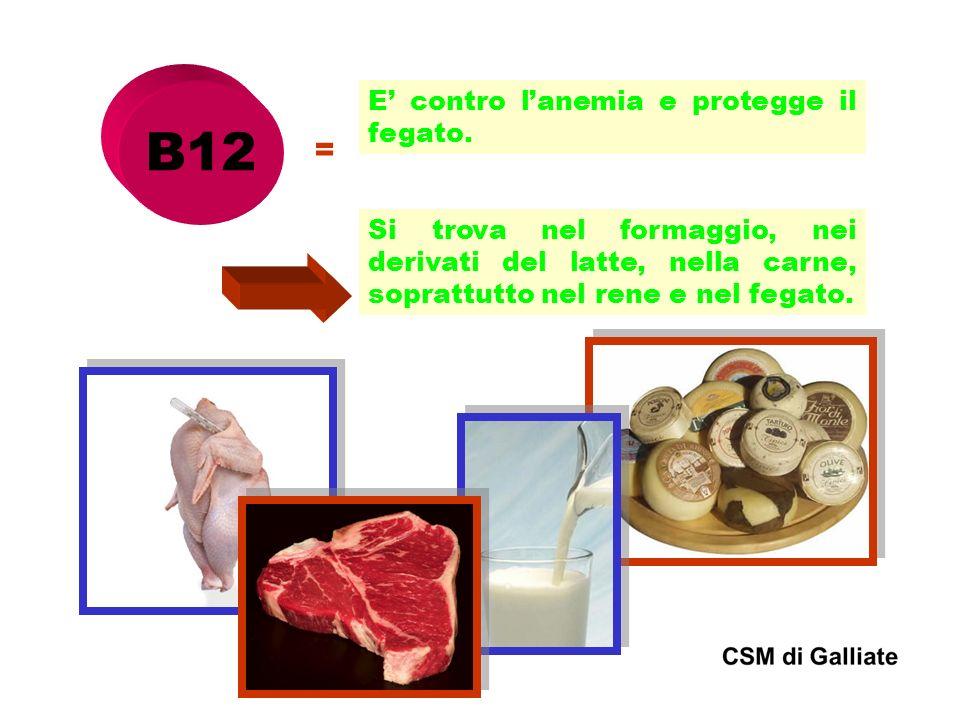 B12 = E contro lanemia e protegge il fegato. Si trova nel formaggio, nei derivati del latte, nella carne, soprattutto nel rene e nel fegato.