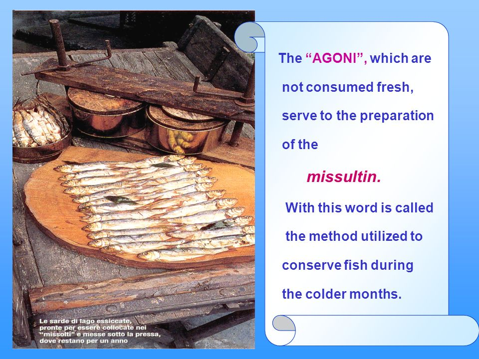 Gli agoni che non vengono consumati freschi servono per la preparazione dei missultin. Con questo termine si indica il metodo usato per conservare il