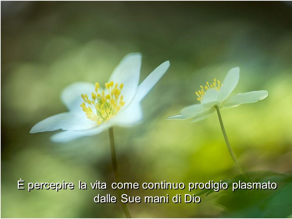 È percepire la vita come continuo prodigio plasmato dalle Sue mani di Dio