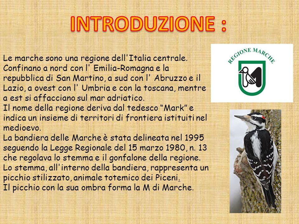 Le marche sono una regione dell'Italia centrale. Confinano a nord con l' Emilia-Romagna e la repubblica di San Martino, a sud con l' Abruzzo e il Lazi